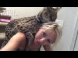 Pet Owner Get A Little More Comfortable With Her Pet