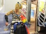 Parrot Commutes On The New York Subway