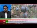 Poppy Popup: Record Afghan Drug Production Despite $7bn NATO Kill-off Campaign