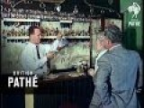 Pub Parrot 1963