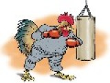 Punching Poultry: Louisiana Lawmaker Claims 'chicken Boxing' Is A Sport