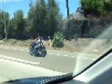 Patriotic Biker Straps His Dog To Motorcycle On 4th Of July