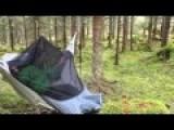 Pretty Cool Camping Hammock