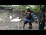 Philippines - Cebu City - Shooting Range - Shooting Some 12gauge Shotgun