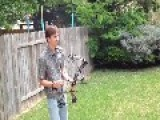 Possums Killed While Banging On Easter Morning