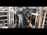 Premium Animal Cruelty Hidden In Premium Buffalo Mozzarella