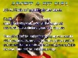 Pit Bull Myth - 9 Famous Pit Bull Myths Explained