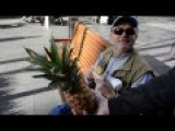 Power Of The Pineapple Episode 1