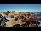 Quadcopter Filming Seawolves HD