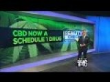 Reality Check: DEA Absolutely Wrong In Making CBD Oil Schedule 1 Drug