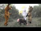 Remi Gaillard Goes Hunting
