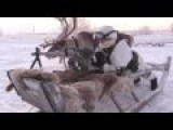 Russian Troops Arctic OPs Exercises