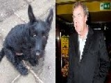 Racist Clarkson?, Jeremy Clarkson Names His Dog Didier Dogba Chaos Ensues