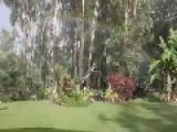 Rainbow Illuminates Australian Garden