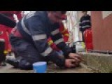 Romanian Firefighter Saves Dog By Mouth-to-mouth Resuscitation