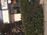 Southern California Man Knocks Out Hawthorne Policeman