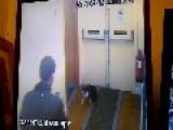 Sorry Excuse For A Person Kicks Around Hostel Cat While Filming It On His Mobile