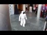 Say Hello To ASIMO. One Day He Will Make You Unemployed
