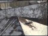 Snowboarding Crow