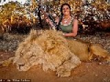 Sexy Huntress Sparks Outrage After Posting Picture Of Herself With Male Lion She Shot Dead