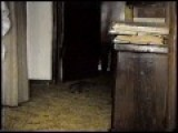Shooting A Large Rat Inside A House With A Handgun From 1991