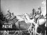 Somali Camel Corps 1943