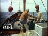 Science In Fishing 1958