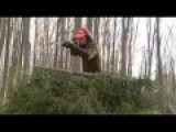 Sniping Wild Boar
