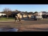Street Fighters In Australia