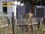 Spiderman Drop A Grenade On The Junta