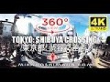 Shibuya Crossing, Tokyo 360° Virtual Reality Video In 4K