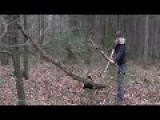 Survival Lilly: Building A Bow And Arrows From Scratch