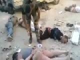 Syria Latest- Syrian Soldiers Capture ISIS & Jabhit Al Nasra Terrorists