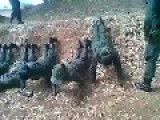 Sri Lankan Army Torture Own Women Army