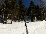 Snowboarder Fails To See Tree