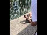 Skaters Beat Up **Rent-a Cops** In Broad Daylight = Unreal! =