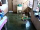 Swing Breaks With Baby In It
