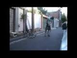 Some Fool On A Little Bike