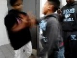 Short Boys Fight School Fights