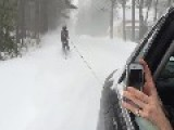 Skiing Through The Streets Behind A Car