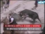 Thor Revenge From Horse