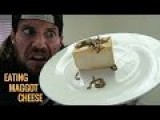 The LA Beast Eating Live Maggots & Cheese