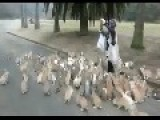 The Rabbit Queen Calls Her Army.... LOL