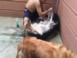 This Dog Knows How To Enjoy A Bath