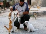 The Syrian Man Who Take Care At The Cats Of His City