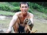 Terrible Food - Eel Fishing In Indochina For Food