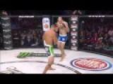 Tamdan McCrory Vs Brennan Ward MMA Fight