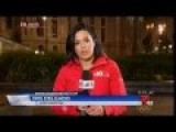 Telemundo Reporter Attacked By Black Woman On Live TV In Philadelphia…