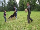 Trained Dog Protects Girl Of 5 Years Old