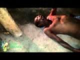 Two Homeless Men Lie In Agony After Brutally Beaten By Man In Vila Alegre Neighborhood